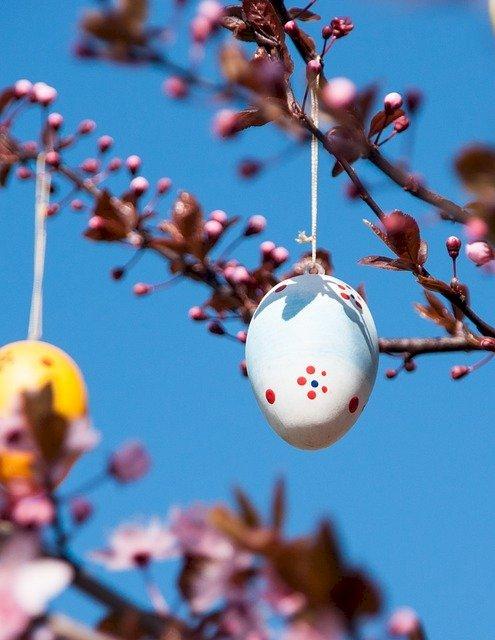 Bola-bola cinta dalam Pohon Telur